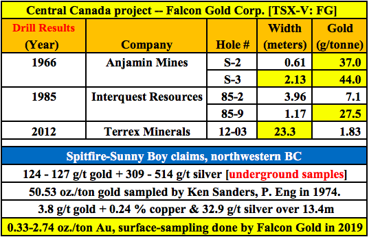 Falcon Gold's CEO sees great things ahead, drill results + exciting near-term catalysts
