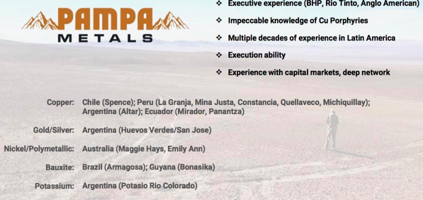 Pampa Metals; 8 properties / 59K ha, in best copper porphyry spot in the world